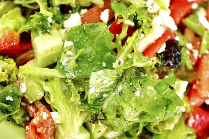 Fresh Diet Vegetable Salad royalty free stock photo