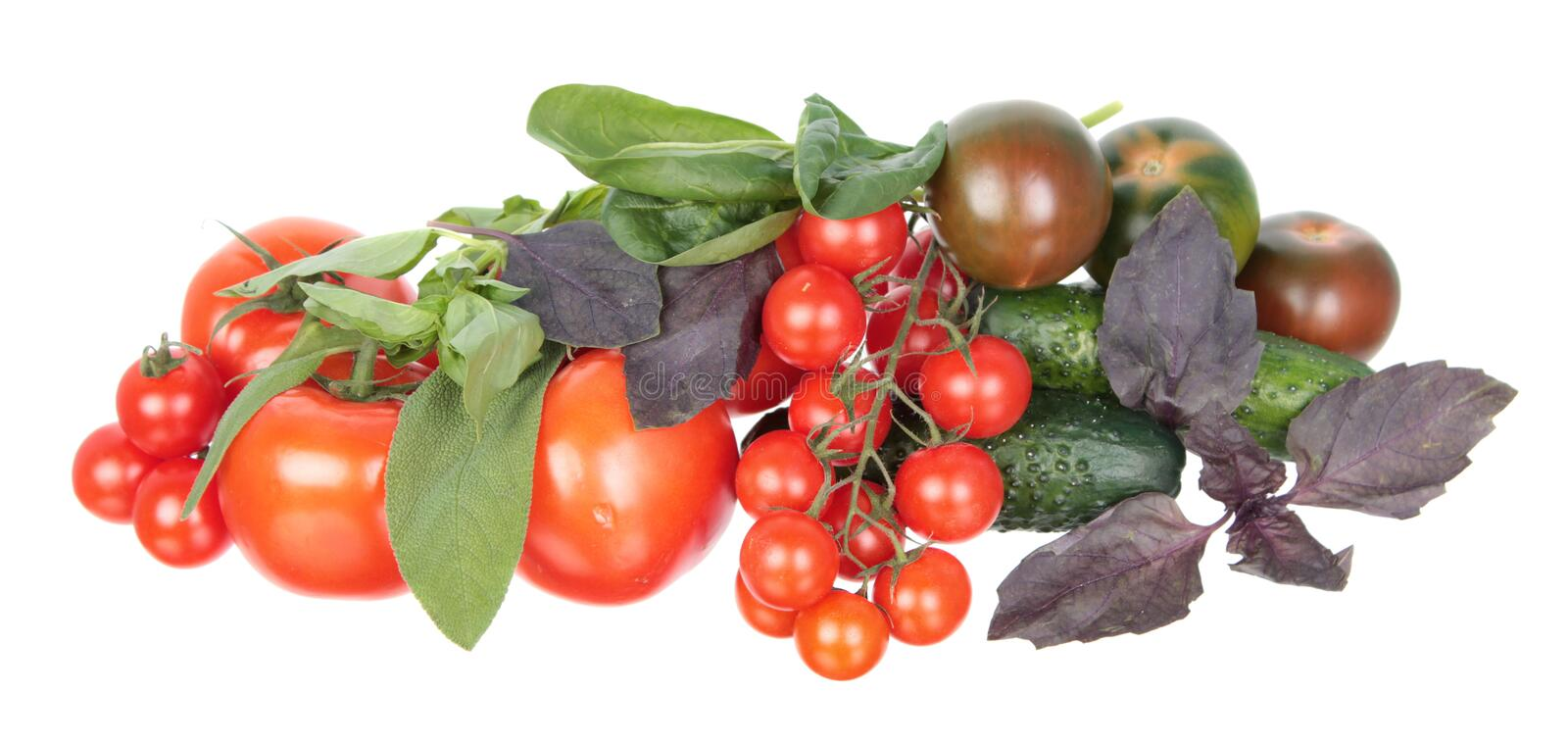 Fresh different red tomatoes, green cucumbers, purple and green basil and sage leaves isolated on white background stock photo