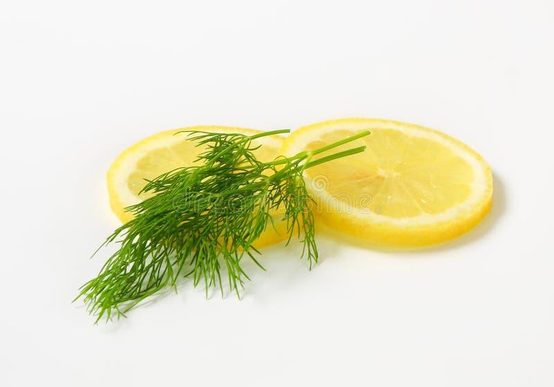 Fresh dill and lemon royalty free stock photos