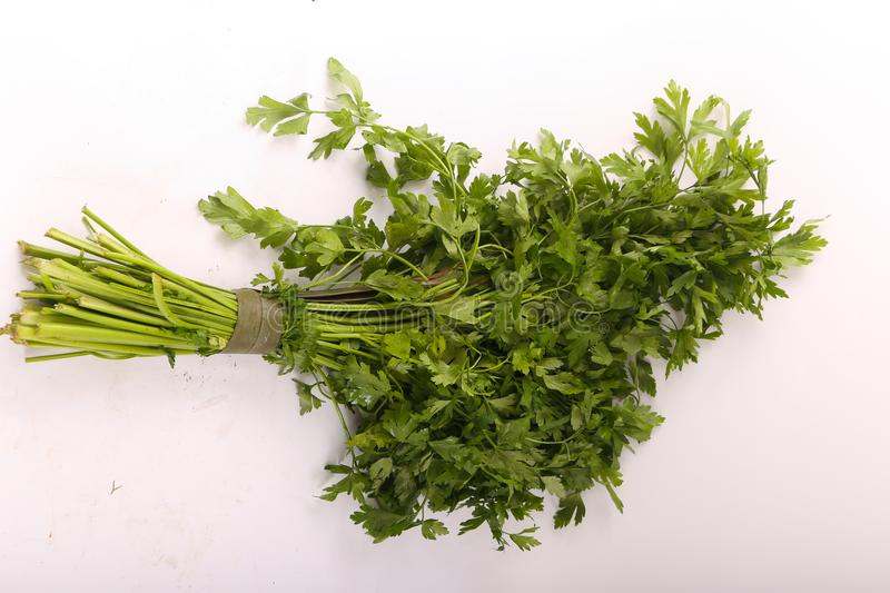 Dill vegetable. Fresh dill vegetable on white royalty free stock images
