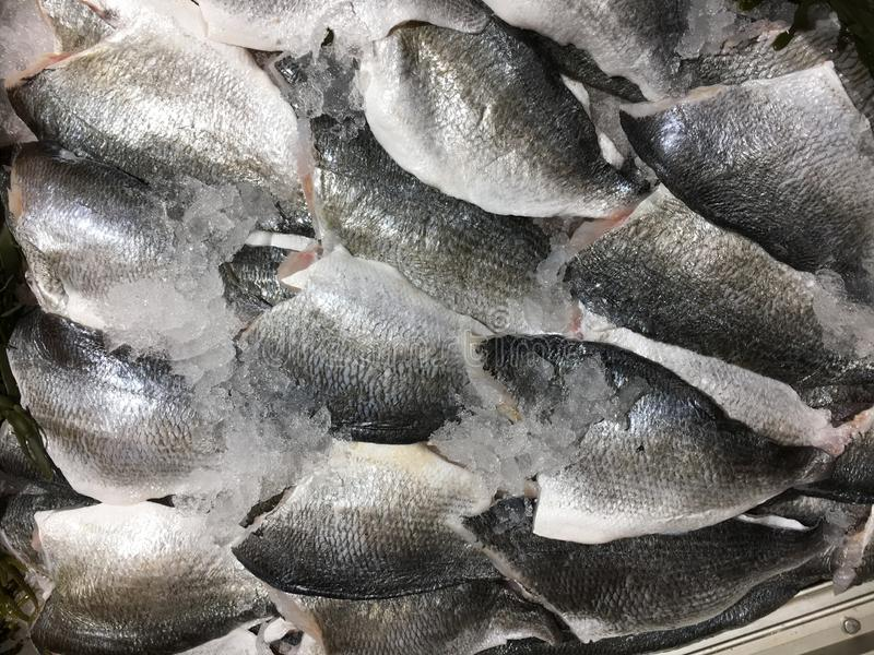 Fresh Dorade Sea Bream fish fillets with ice on market, Close-up picture, background. Pioppi, bbq, healthy sea food, restaurant cook royalty free stock photography