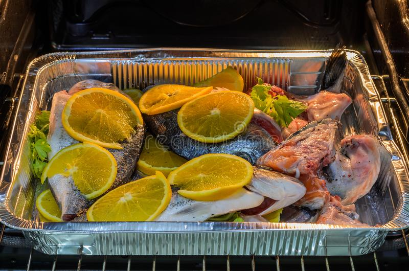 Fresh dorado fish with oranges on a baking tray in the oven stock photography