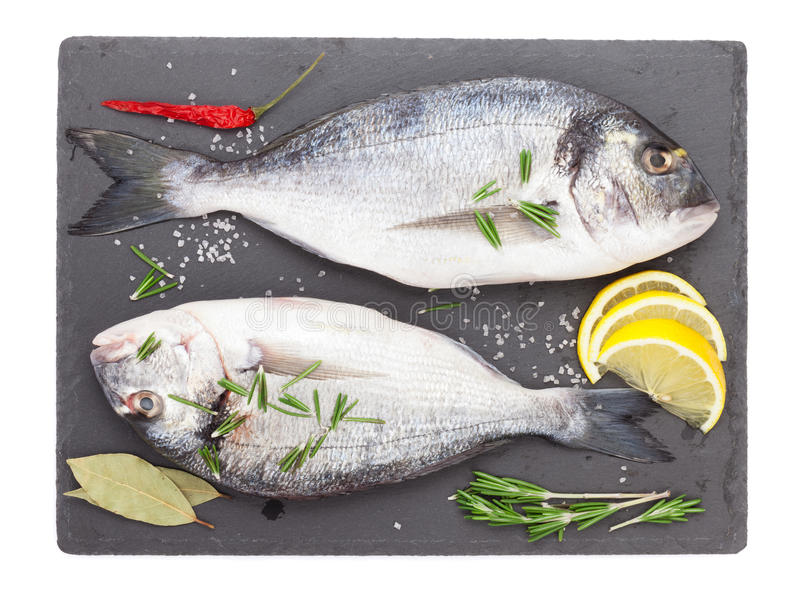 Fresh dorado fish with spices stock images