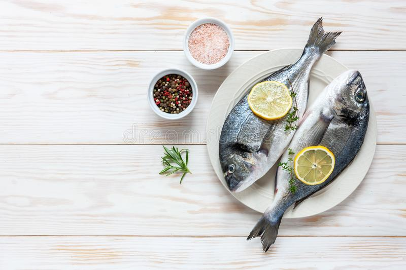 Fresh dorado fish with spices, olive oil, garlic and  seasoning on white dish on white table. Top view, copy space.  royalty free stock photography