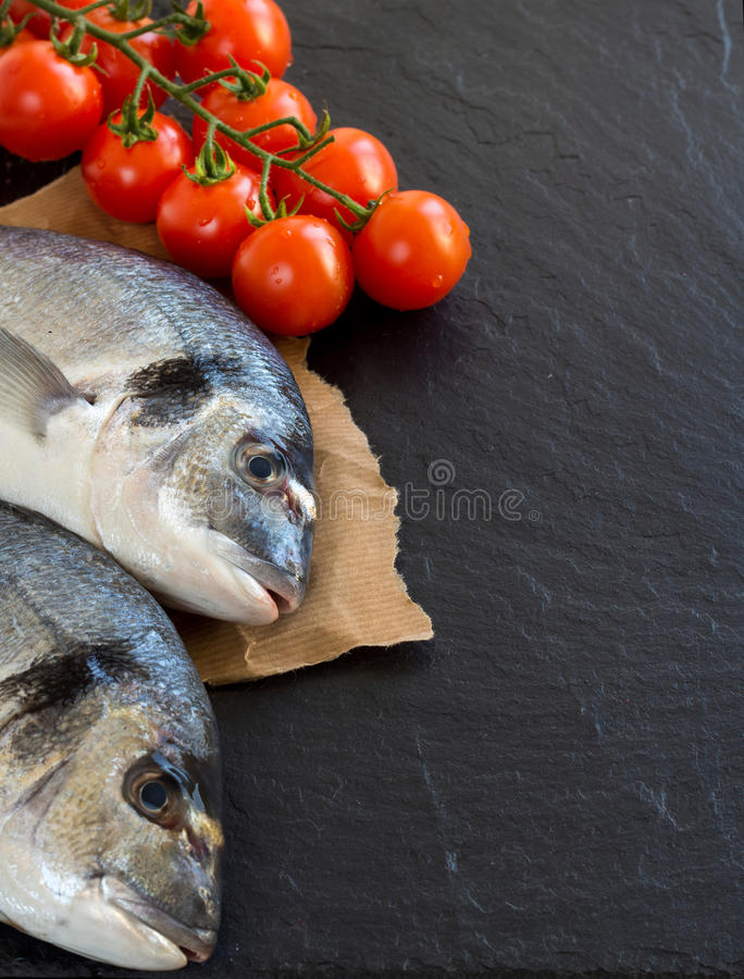 Fresh dorado fish royalty free stock photo