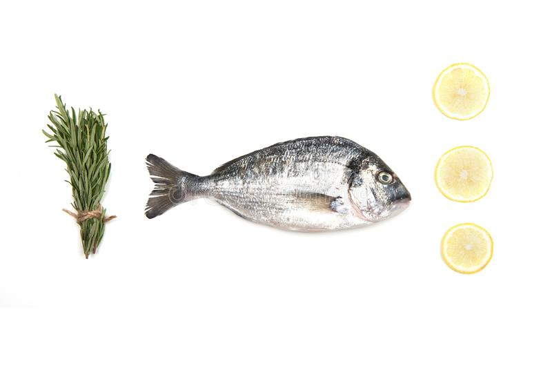Fresh Dorado Fish on white background with ingredients for cooking. Fresh Dorado Fish isolated on white background ingredients for cooking. View from above stock photography