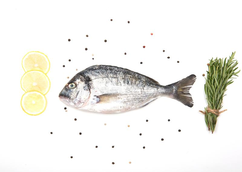 Fresh Dorado Fish on white background with ingredients for cooking. Fresh Dorado Fish isolated on white background ingredients for cooking. View from above stock images