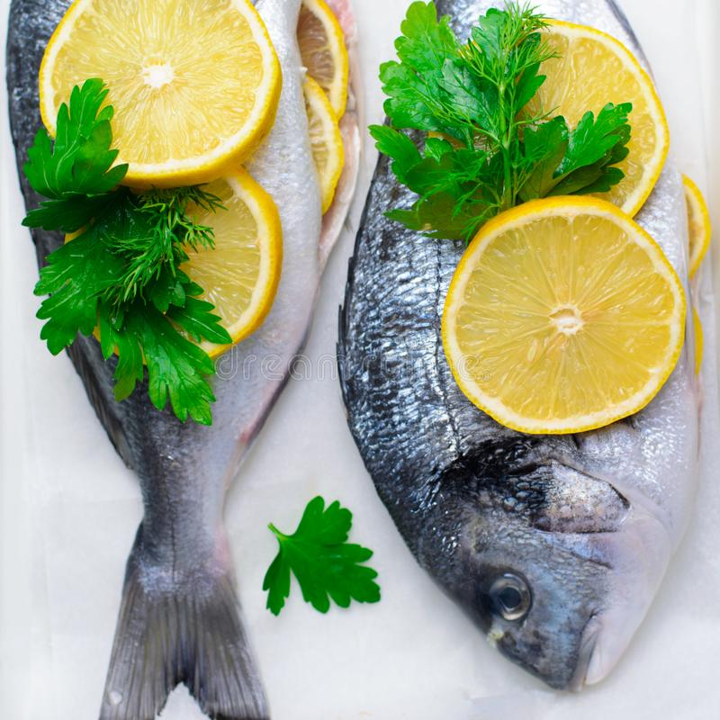 Fresh Dorado or Sea Bream with Lemon and Herbs, Raw Fish Ready to be Cooked, Top View. Fresh Dorado or Sea Bream with Lemon and Herbs, Fish in Baking Tray Ready stock photos