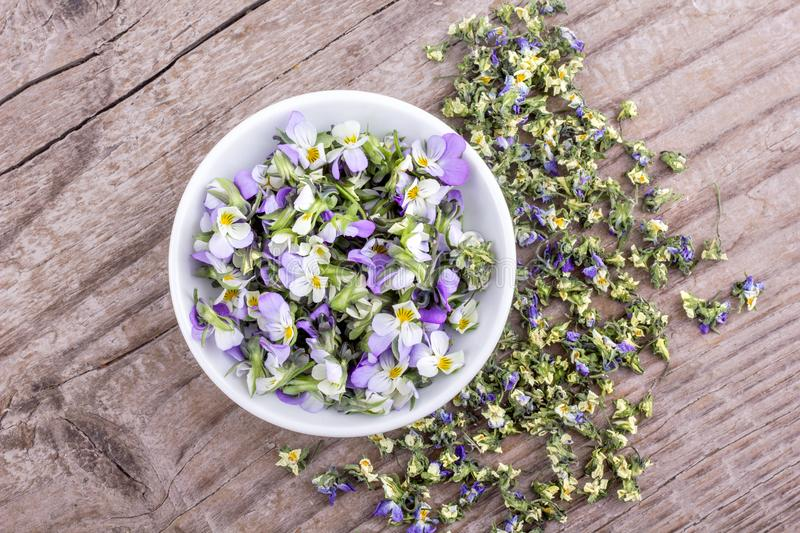 Fresh and dried flowers from violet heartsease stock photo