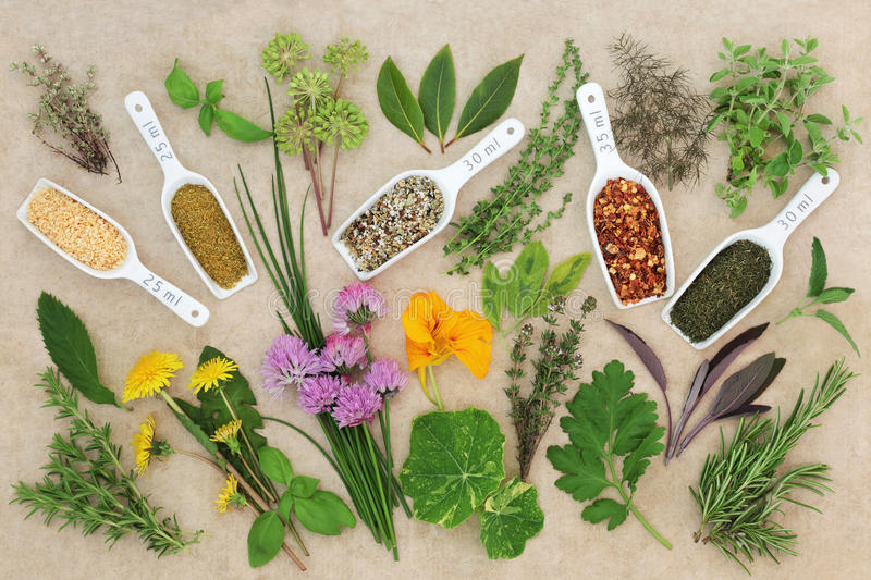 Fresh and Dried Spice and Herb Collection. On hemp paper background stock photo