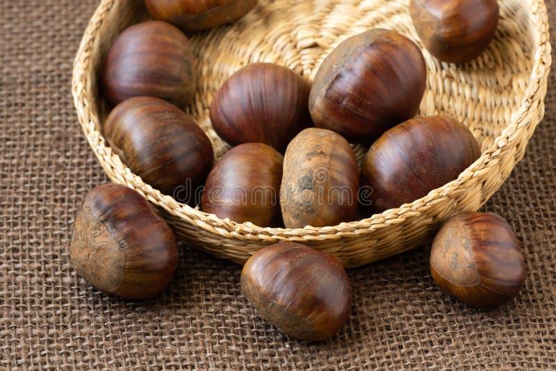 Fresh edible chestnuts stock photo
