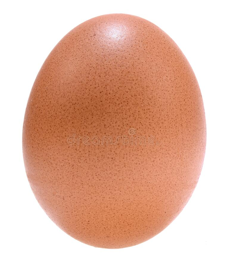 Fresh egg isolated on white background. Natural food concept objectn royalty free stock photography