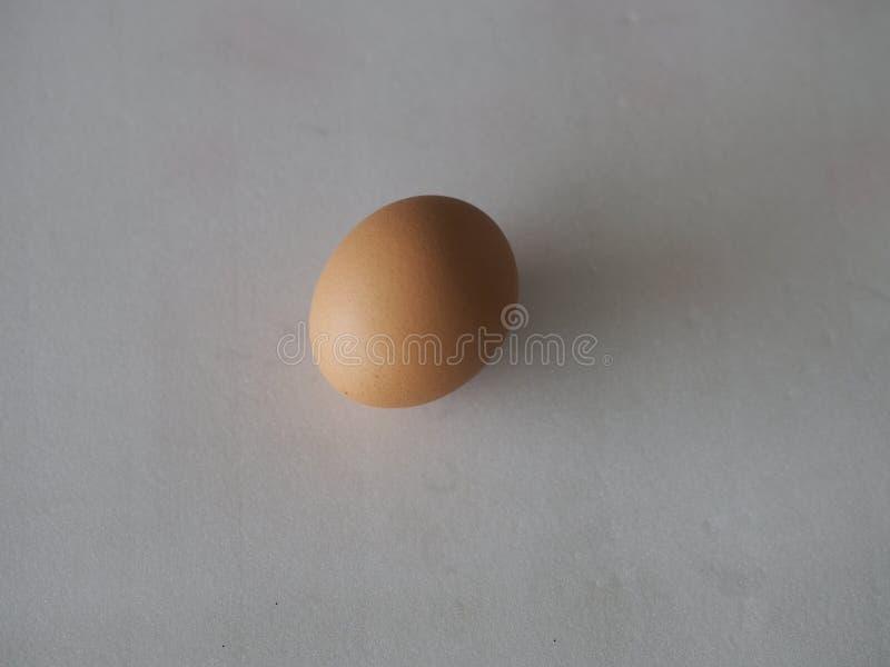 Fresh egg on white background. Closeup Fresh egg on white background stock photos