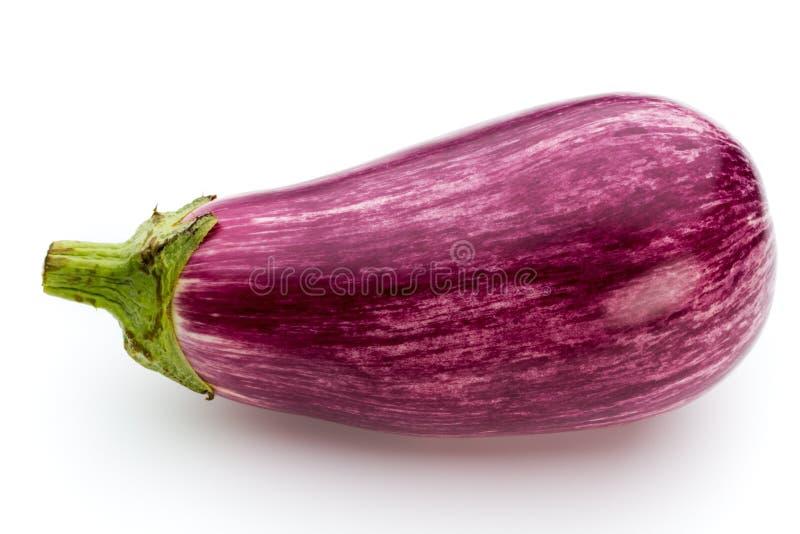 Fresh eggplants, aubergine on a white background. Fresh aubergine on a white background stock photos