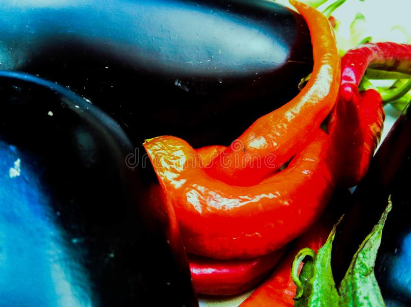 Eggplants with hot peppers. Fresh Eggplants with hot red and green peppers on white background royalty free stock photo