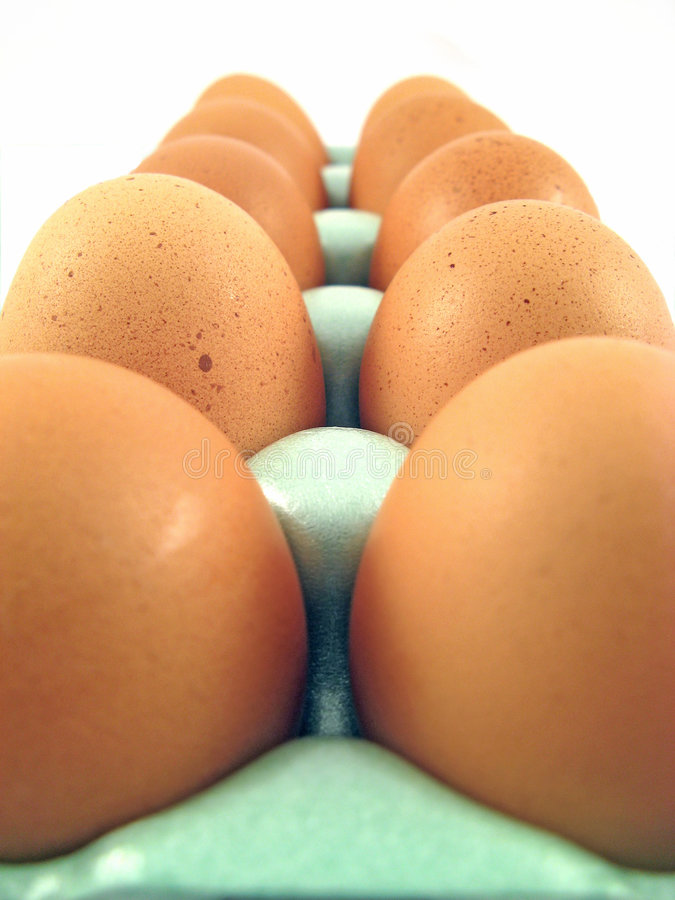 Free Fresh Eggs Stock Images - 3818314