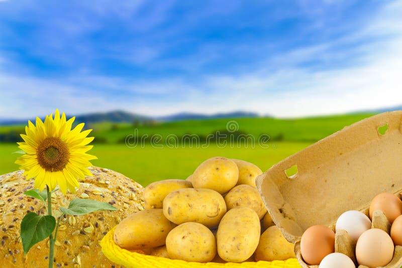 Fresh eggs, bread and potatoes, bio products stock photo