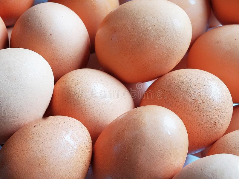Fresh eggs. Fresh chicken eggs close up royalty free stock image