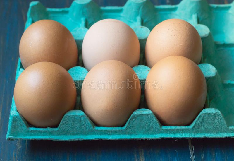 Fresh eggs on cyan cardboard container. Fresh chicken eggs, in cyan blue cardboard container, front view stock photo