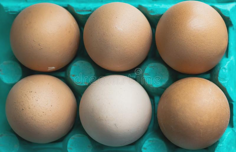 Fresh eggs in cyan cardboard container. Fresh chicken eggs, in cyan blue cardboard container, top view royalty free stock photo