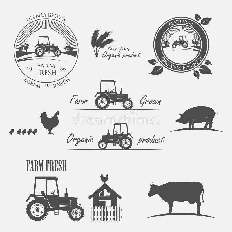 Fresh Farm Produce vector illustration