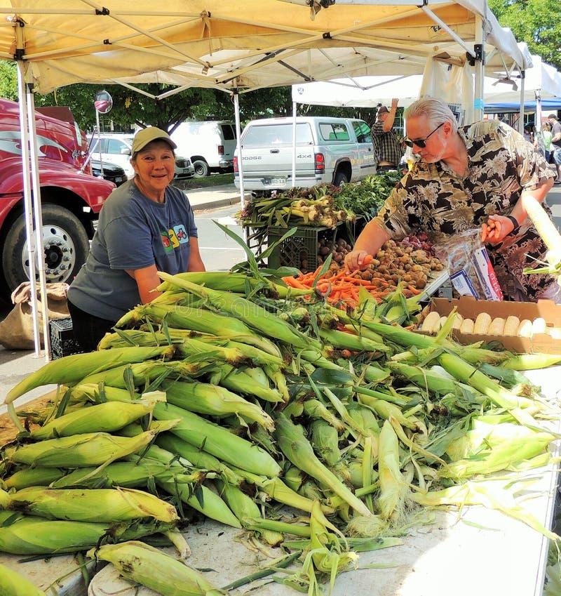 Fresh farmer's market corn royalty free stock photography