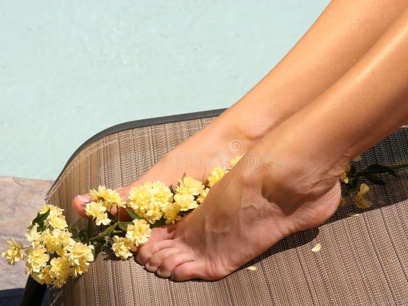 Fresh Feet stock photos