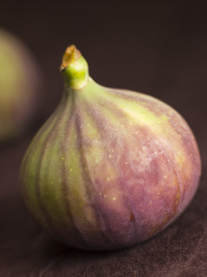 Download Fresh Fig stock image. Image of supplement, groceries - 7229801