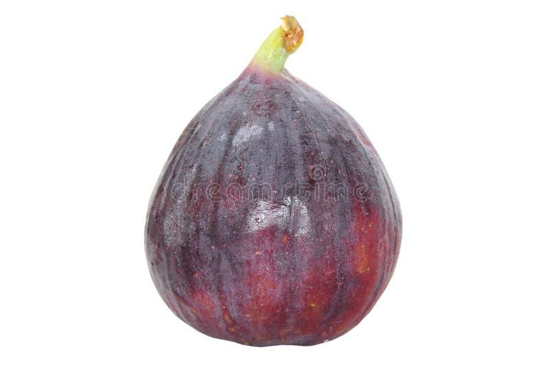 Fresh fig fruit isolated on white stock image