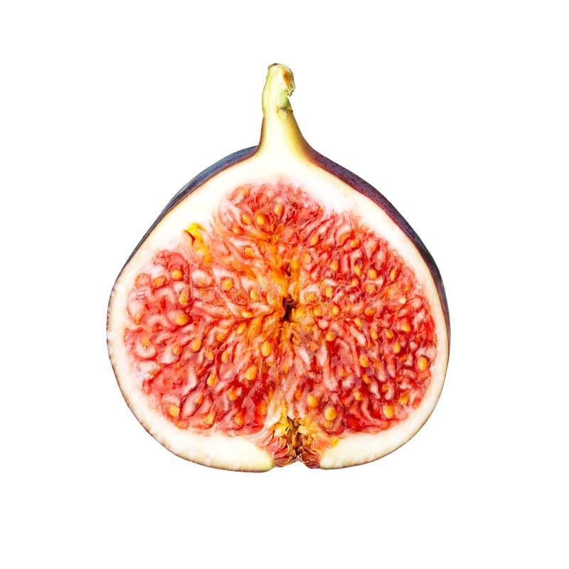 Fresh fig slice isolated on white background royalty free stock photography