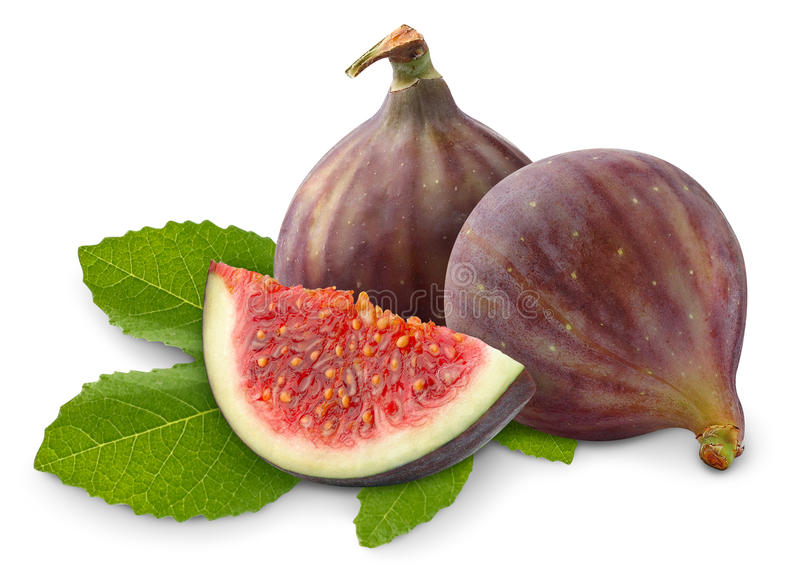 Isolated fresh figs royalty free stock photography