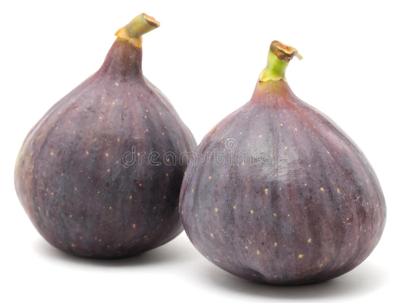 Download Fresh Figs stock photo. Image of tropical, health, purple - 21752230