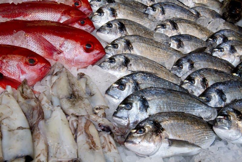 Fresh fish. On market display royalty free stock image