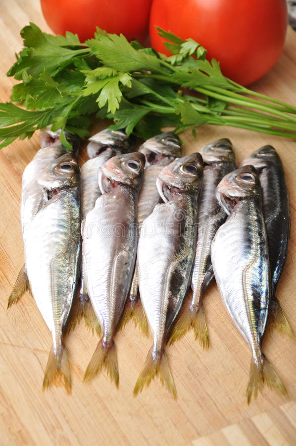 Download Fresh fish stock image. Image of cold, board, cuisine - 21572135