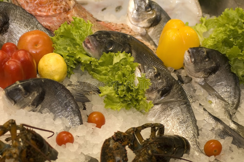 Download Fresh Fish Stock Images - Image: 4445024