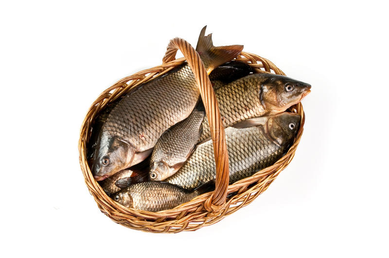 Fresh fish in a basket stock photography image 37950302 for Live fish basket
