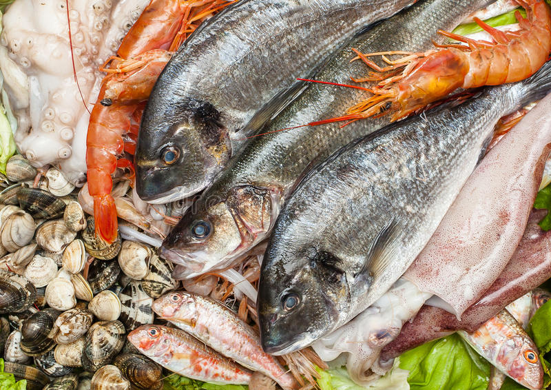 Fresh fish and clams stock images