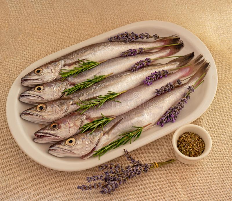 Food photo. Fresh fish cleaned and prepared for cooking stock photography