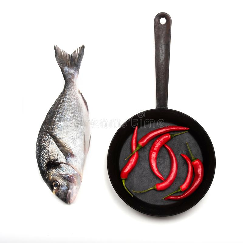 Fresh fish dorado and chilli on a frying pan. Fresh fish dorado and chilli on a frying pan on a white background. View from above royalty free stock image