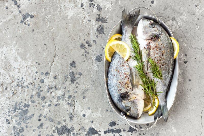 Fresh fish dorado. Raw dorado fish with lemon and rosemary. Sea bream or dorada fish. Stock photo royalty free stock image