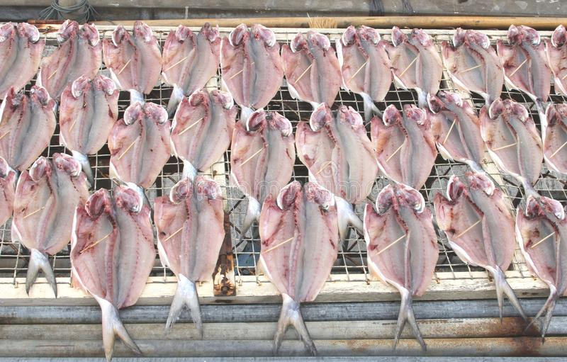 Fresh fish is drying in the sun, gastronomy in Hong Kong royalty free stock photo