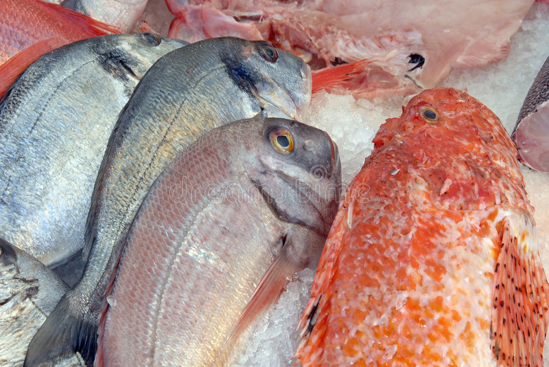 Fresh fish on ice. For sale at market stock photography
