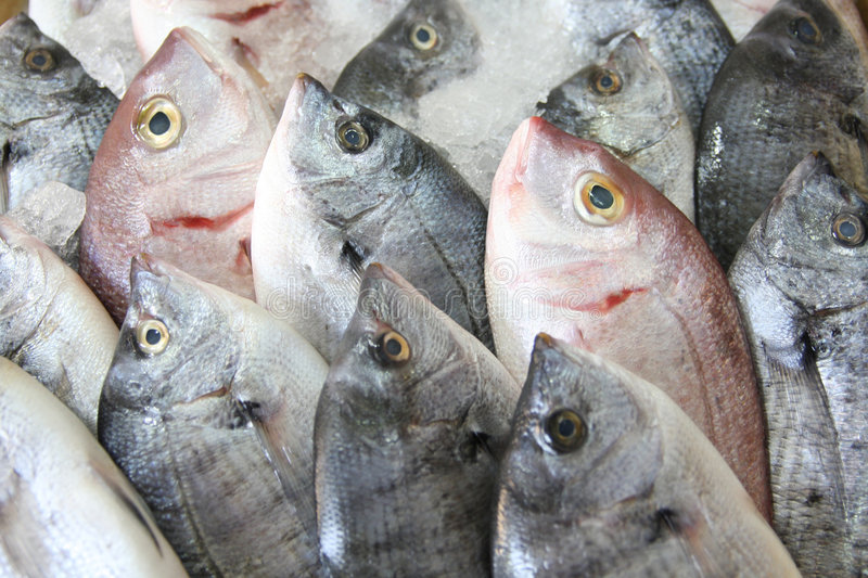 Fresh fish on ice. Decorated for sale at market stock photo