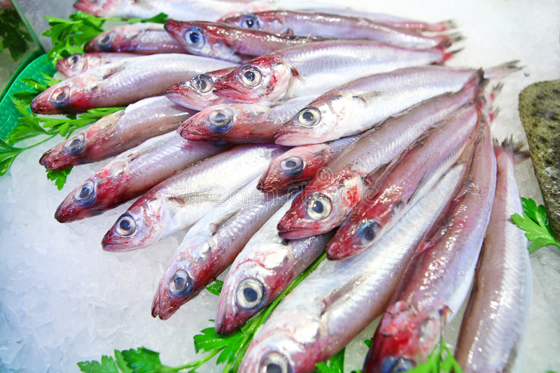 Fresh fish on ice. On the local market royalty free stock photo