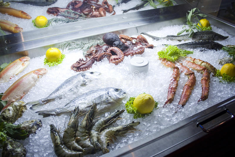 Fresh fish on ice. Different types stock photos