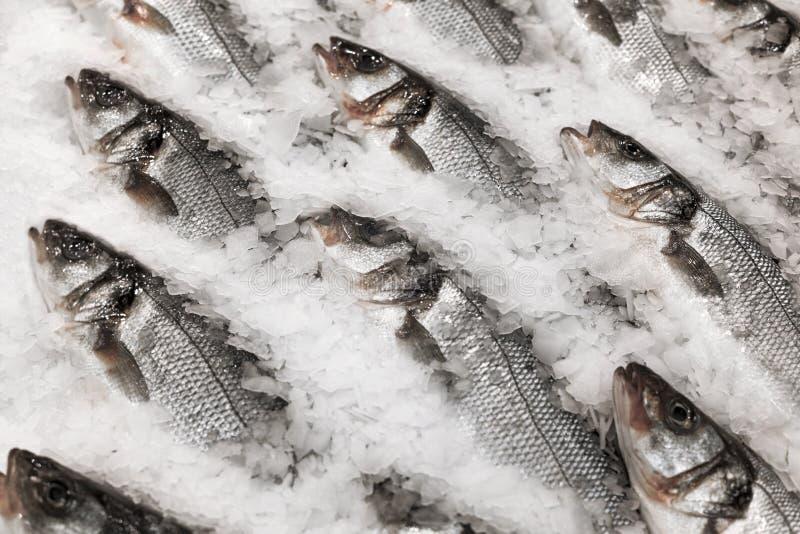 Fresh fish on ice. On the market royalty free stock image