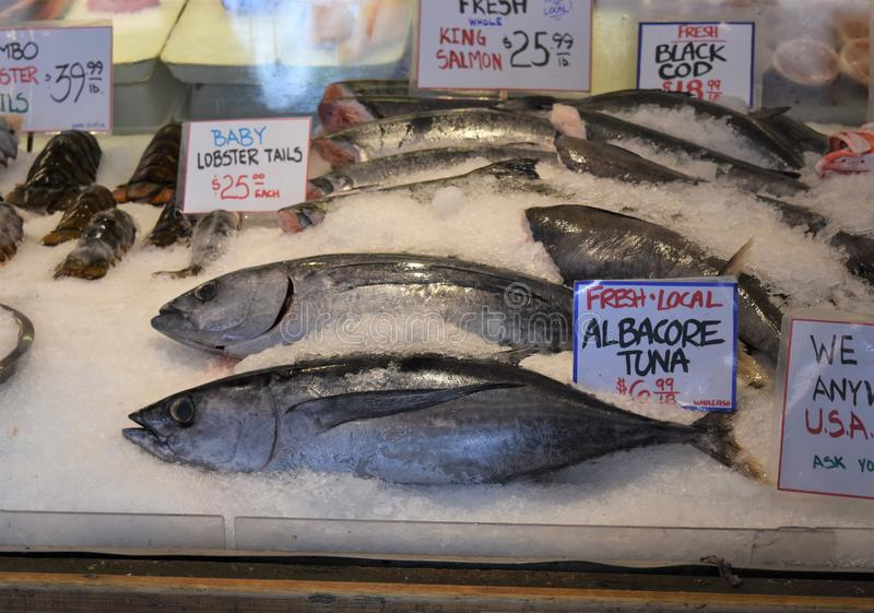 Fresh fish on ice in a market stock photos