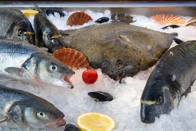 Fresh fish on ice. Fresh fish, shells, vegetables and fruits on ice royalty free stock photography