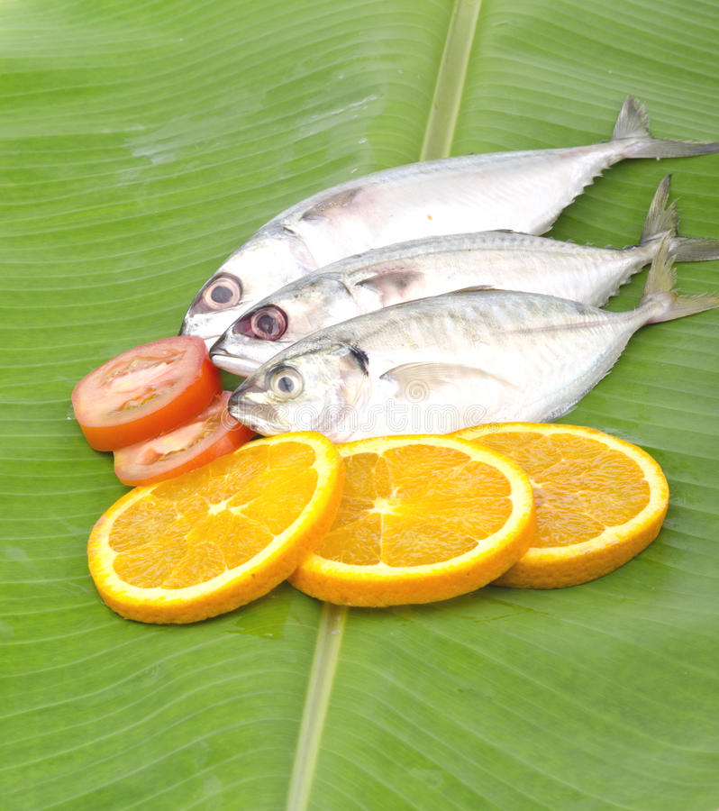 Fresh fish isolated on banana leaf. Fresh fish decorated with lemon and tomato to giving more fresh before cooking isolated on banana leaf royalty free stock photography