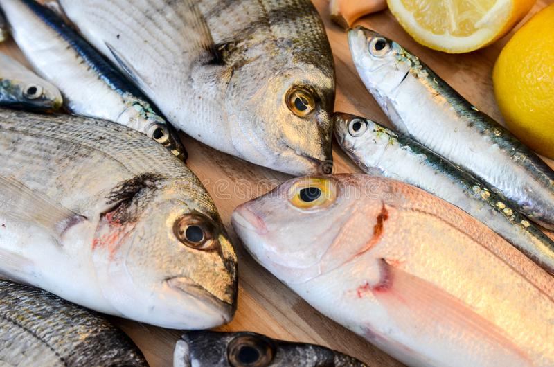 Fresh fish with lemon ready for cooking. Preparing delicious and tasty seafood meal. Uncooked Gilt-head sea bream, Sardines, Commo stock photos
